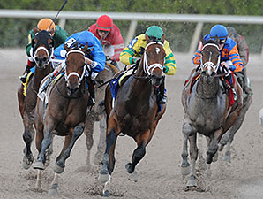 Onlyforyou wins the 2014 Forward Gal Stakes.