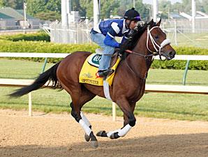 Optimizer gallops at Churchill Downs 4/22/2012