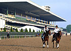 Unlocking Winners: The 145th Belmont Stakes