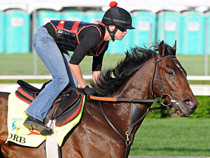 Kentucky Derby Preview: All About Orb