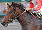 McGaughey Impressed With Orb&#39;s Latest Workout