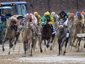 Clean Test Results for Derby, Oaks Starters
