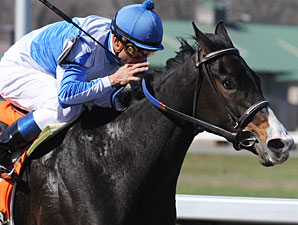 Orchestrator Engineers Bourbonette Oaks Wins