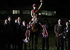 Dam of Japanese Champ Orfevre Dies