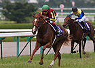 Japan's Orfevre Takes Another Shot at Arc