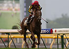 Favored Orfevre Wins Japanese Derby