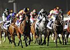 Aussie Mare Ortensia Scores Al Quoz Sprint
