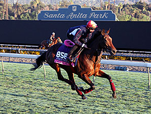 Osaila - Breeders' Cup 2014