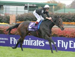 Ouija Board Earns Second Female Turf Eclipse