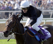 Breeders' Cup Winner Ouija Board is European Horse of the Year