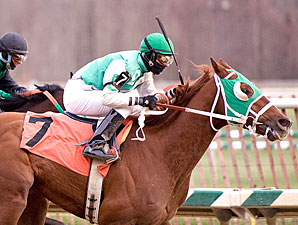 Our Commander wins the 2009 Maryland Juvenile Championship.