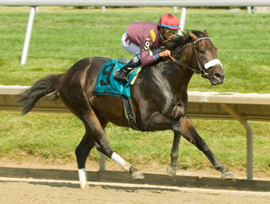 Our Edge Rules Over Barbaro Rivals