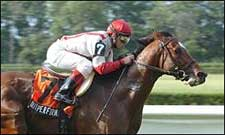Outperformance Overpowers Foes in Hill Prince