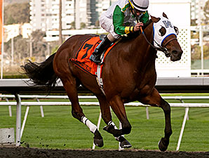 Outside Nashville wins the 2014 Oakland Stakes.