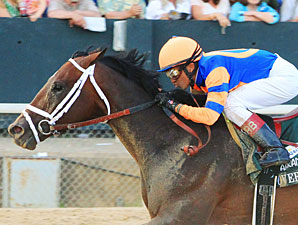 Grade I Winner Overanalyze Retired to WinStar