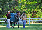 Oxbow, Pointing to Haskell, Arrives at Spa