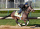 Oxbow Heads Monday&#39;s Derby, Oaks Workers