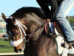 Oxbow at Oaklawn on April 12, 2013
