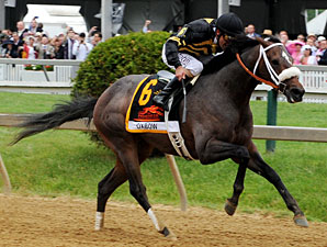 Lukas Duo Confirmed to Run in Belmont Stakes