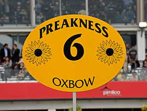 Overnight TV Ratings Tick Up for Preakness