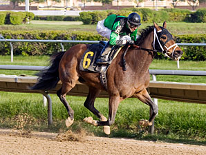 P D Q Kiddo wins the 2012 Milwaukee Avenue Handicap.