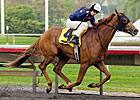 Pachattack Gobbles Foes in Arlington Matron