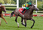 Paddy O'Prado Takes On Elders in Turf Classic