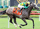 Paddy O&#39;Prado Too Tough In Va. Derby