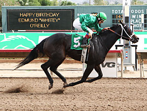 Page Springs wins the 2012 Princess of Palms Stakes.