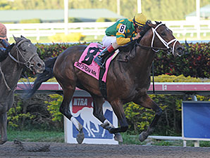 New Orleans Handicap Next for Palace Malice