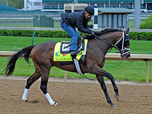 Palace Malice, with Mike Smith, works towards the Kentucky Derby.