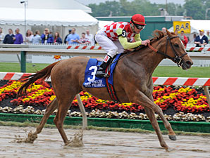 Palanka City Aces Miss Preakness Test