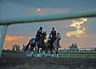 Gulfstream Park to Open Palm Meadows