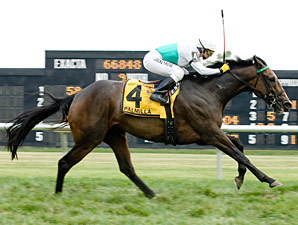 Palmilla Leads Diverse Dowager Field