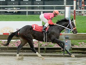 Pants On Fire Maiden win, Delaware Park 10/4/10