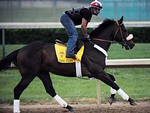 Papa Clem gallops at Churchill Downs on April 28