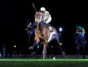 Papaw Bodie wins the 2012 John. B. Connally Stakes.