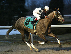 Warrior's Reward Seeks First Blacktype Win