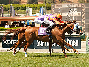 Parranda wins the 2014 Royal Heroine Stakes.