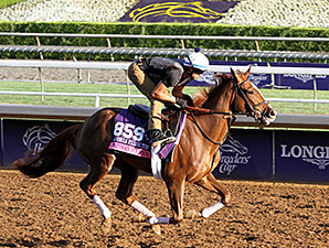 Partisan Politics - Breeders' Cup 2014
