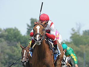 Partisan Politics wins the 2014 P. G. Johnson Stakes.