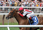 Partisan Politics Back for Miss Grillo Stakes