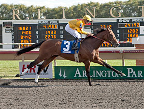 Pataky Kid wins the 2012 Arlington-Washington Futurity.