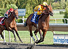 Pataky Kid Shows Promise in A-W Futurity Win