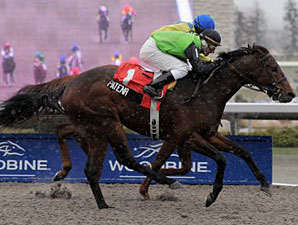 Patena Works, On Target For La. Derby