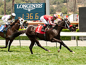 Patriots Rule wins the Crystal Water Stakes.