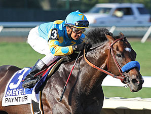 Paynter Progresses with Half-Mile Work
