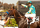 Grade I Winner Paynter to Stand at WinStar