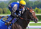 Paynter Posts Bullet Work for Belmont Stakes