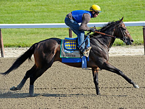 Zayat Hopes Paynter is His Masterpiece